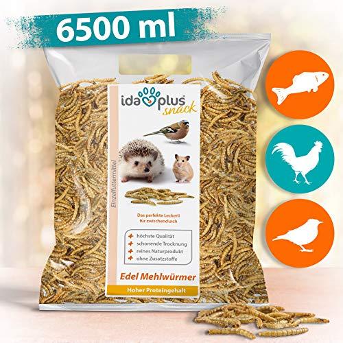 Ida Plus - Edel Mehlwürmer getrocknet - 6500 ML - Insekten Snack für Hühner, Igel, Hamster, Teichfische und Reptilien - Vogelfutter für Wildvögel - Naturprodukt ohne Zusatzstoffe - Wildvogelfutter -