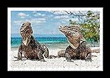 Puzzle Style (Preensamblado) Stampa della parete di iguana by Lisa Loft