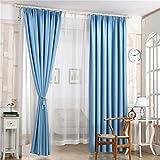 Tongshi 210x100cm sombreado floral de la gasa de la cortina de puerta divisor de la cortina de ventana de habitaciones (Azul)