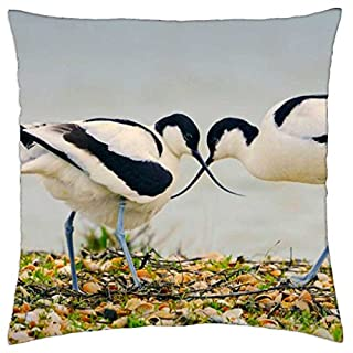 Pied Avocets - Throw Pillow Cover Case (18