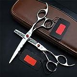Cheveux Ciseaux Set avec Etui, en Acier Inoxydable 6 Pouces Professionnel Coupe de Cheveux Salon Coupe de Cheveux Jeu de Ciseaux