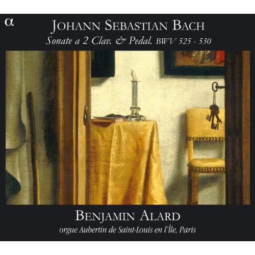 Trio Sonata No. 4 in E Minor, BWV 528: I. Adagio - Vivace