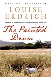 Image de The Painted Drum: A Novel