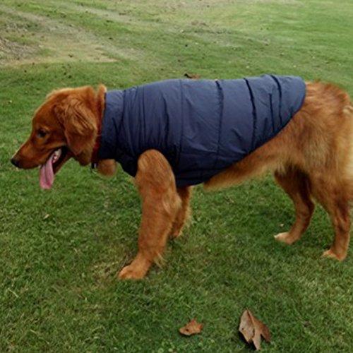 Woopower warmer Hundemantel, winddichte Welpenweste Jacke Haustier Winter Kleidung für kleine/mittlere/große Hunde, Größen: ()