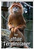 Der affige Terminplaner (Wandkalender 2019 DIN A4 hoch): Der Terminplaner nicht nur für Affenfans (Planer, 14 Seiten) (CALVENDO Tiere)