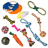 ZIIDOO Set di Giocattoli per Cani, Corda da Masticare, Frisbee, Palla che emette suono quando si gira, Peluche (suono da masticare), Bastoncino Molare