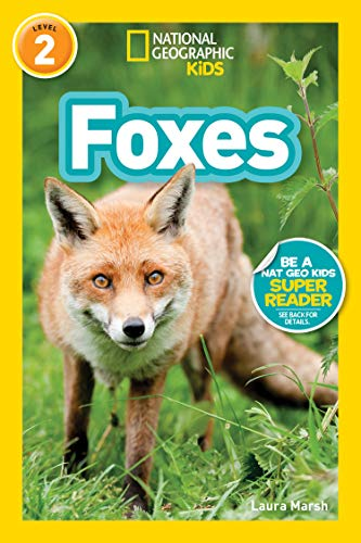 National Geographic Readers: Foxes (L2) (National Geographic Readers, Level 2) (English Edition)
