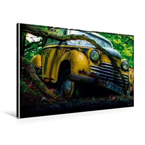til-Leinwand 90 cm x 60 cm quer, Verfangen | Wandbild, Bild auf Keilrahmen, Fertigbild auf echter Leinwand, Leinwanddruck Mobilitaet Mobilitaet ()
