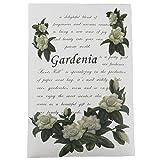 """Frandy House sacchetto profumato bustine pacchetti, design classico, confezione da 4, Gardenia, 6.7*0.2*4.6"""""""