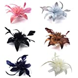 Bride Boutique Wedding Races Prom Feather & Net Flower Design Hair Comb Fascinator