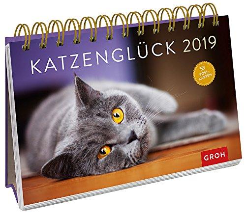 Katzenglück 2019: PostkartenKalender mit separatem Wochenkalendarium (Tischkalender Katzen)