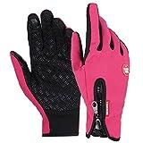 Wintersport-Handschuhe OKCSC (TM) Warm, winddicht, mit Touchscreen-Funktion für Smartphones, Outdoor, Sport, Wandern, Radfahren Gym Ski-Handschuhe Winter Gloves Unisex (Rose Red, S)