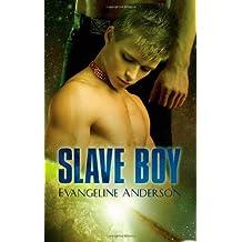 Slave Boy by Evangeline Anderson (2008-09-03)