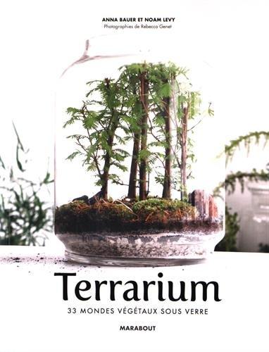 terrarium-33-mondes-vegetaux-sous-verre