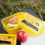 BVB-Pausenset (2 Brotdosen) one size