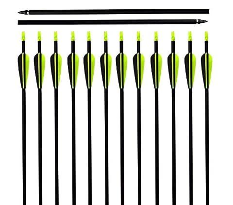 Flèche en Carbone Mixte Bangta, 32 pouces, Tête de flèche en acier inoxydable Remplaçable, Encoche en plastique, Flèche pour l'extérieur et pour la chasse, Tir à l'Arc, Sports et loisirs (12 pièce)