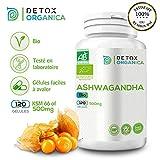 Detox Organica Ashwagandha Capsules Bio - 120 Capsules - 500mg - Herbe Ayurvédique-100% Naturel - Certification Biologique Francaise