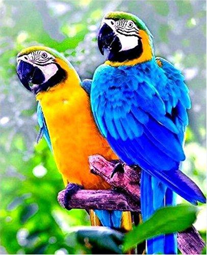 5D Diamond Painting Kit Bricolage en strass Broderie en croix Entier complet Artisanat artistique pour décoration murale à la maison 11,8 * 15,7 pouces (30 * 40 cm) Blue Yellow Parrots