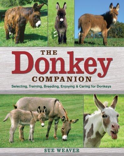 The Donkey Companion: Selecting, Training, Breeding, Enjoying & Caring for Donkeys by Sue Weaver (2008-08-27)