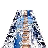JLCP Läufer Teppiche Flur, 3D Eisberg Hängeleiter Teppichläufer Für Küche/Treppen/Durchgang Eingang rutschfeste Verschleißfest Fußmatten,Waschbar,Mehrere Längen,2,60x400cm
