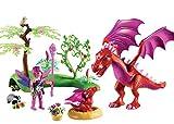 Playmobil- Gardienne des fées avec Dragons, 9134, Autre, Norme