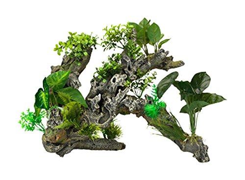 aqua-della-flora-scape-numero-9-aquarium-racine-41-x-405-x-345-cm