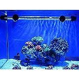 G-Lighting Aquarium LED Beleuchtung Leuchte Lampe 57 LEDs 4W 48CM Lighting für Fisch Tank, EU Stecker Blaulicht Wasserdicht