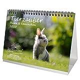 Calendrier de table 2020, motif lapins et lapins - Format A5