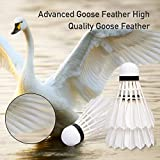 HyAdierTech Badminton Shuttlecock, Advanced Goose Feather Shuttlecocks, 12Pcs Feather Shuttlecocks Training Badminton Balls for Indoor Outdoor Sports Training (Type 1)