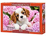 Castorland Pup in Pink Flowers 500 pcs Puzzle - Rompecabezas (Puzzle Rompecabezas, Fauna, Niños y Adultos, Perro, Niño/niña, 9 año(s))