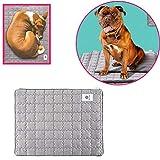 Haol Morbido Pet Pet Dog Cat Mat Puppy Bed Pet Antibatterico Deodorante Pad,S