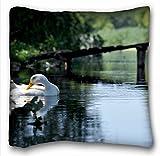 décoratifs carré Couvre-lit Taie d'oreiller animaux Oiseaux animaux Oiseaux Couleur Parrot Toucan arbres Yeux POV 45,7x 45,7cm deux côté, Soie, Motif 9, European