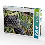 Ananas, Oahu 1000 Teile Puzzle hoch