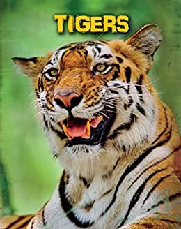 Tigers living in the wild big cats ebook anna claybourne tigers living in the wild big cats by claybourne anna fandeluxe Ebook collections