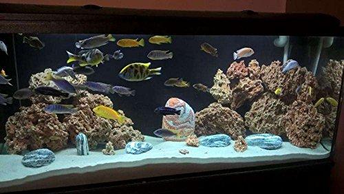 TM Aquatix Aquarium Rock Decoration Fish Tank Stone Ideal for Malawi Cichlid (20kg, Red) 4