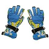 #5: Phenovo Men Winter Sports Waterproof Motorcycle Snow Ski Gloves - Blue Camo XL