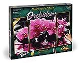 Schipper - Malen nach Zahlen - Orchideen - Bilder malen für Erwachsene, inklusive Pinsel und Acrylfarben, Triptychon 50 x 80 cm