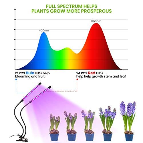 Zoom IMG-3 lampada per piante glime luce