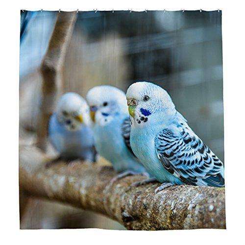 rioengnakg Drei blau Vögel Wasserdicht Polyester Duschvorhang, #1, 72