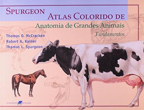 Spurgeon. Atlas Colorido De Anatomia De Grandes Animais. Fundamentos (Em Portuguese do Brasil)