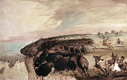 Miller: Buffalo Hunt. /Nnative American Hunters of The Great Plains Driving Herds of Buffalo Over A Precipice. Watercolor 1867 by Alfred Jacob Miller. Kunstdruck (45,72 x 60,96 cm) -