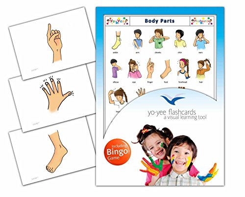 Body Parts Flashcards in English - Flash Cards with Matching Bingo Game in One Set - Vocabulary Picture Cards for Babies, Toddlers, Kids and Children - Size 4.13 × 5.83 in - DIN A6