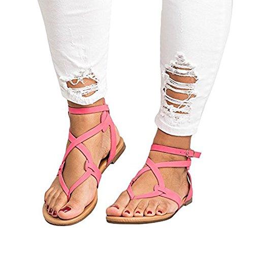 Shelers Damen Flip Flops Schnalle Sommer Strand Wohnung Gladiator Sandalen (38 EU, Rose - Open Schuhe Damen Schwarz Toe Kleid