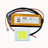 GLW® Wasserdichte 50W LED-Treiber-Stromversorgung + 50W kalte weiß LED-Chip-Birnen-Energieeinsparung für DIY