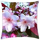 Spring. flores crateagus - Throw Pillow Cover Case (18