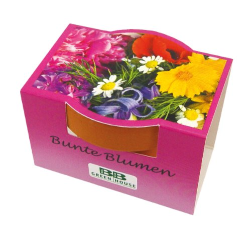 10er Set Minipflanzset Bunte Blumen -