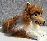 Hund Collie 50 cm von Luigi Bocchetta, Plüschhund, Kuscheltier