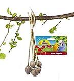 JR-Farm Mohn-Kapseln für alle Ziervögel