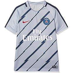Nike PSG Y NK Dry SQD Top SS GX Maillot Manches Courtes París Saint-Germain FC pour Homme, Gris (Wolf Grey/Wolf Grey/University Filet), XS