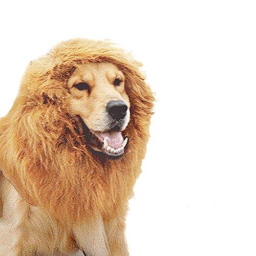 UEETEK Perücke für Hunde /Hunde Kostüm Löwe/lustige Haustier Kragen für Halloween / Party / Festivals (Braun)